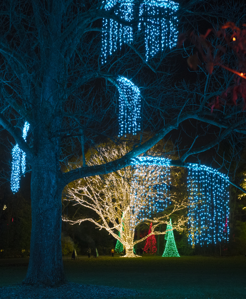 Indianapolis Museum Of Art Holiday Lights